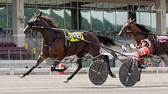 Harness Racing - United States Trotting Association